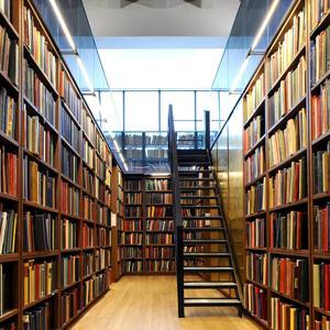 Библиотеки Суксуна